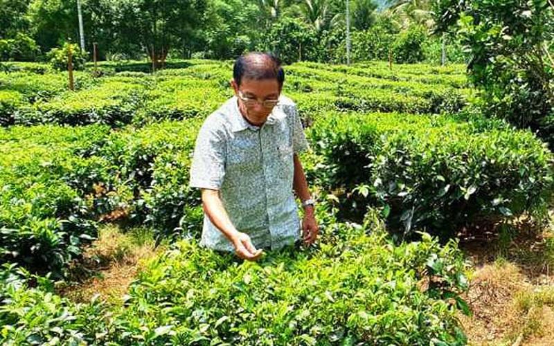 Chủ tịch tỉnh Bình Định tặng bằng khen cho 5 người giúp nông dân xóa nghèo