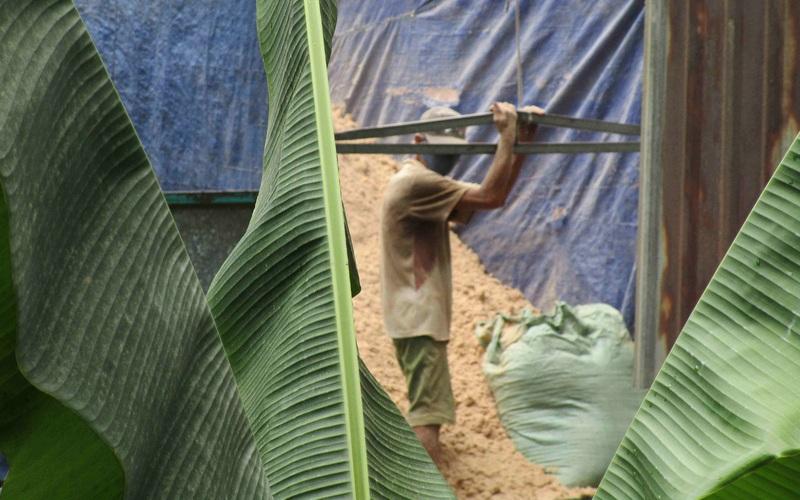 Bình Định: Mang khẩu trang trong nhà cả ngày vì xí nghiệp chế biến lâm sản Bông Hồng gây ô nhiễm