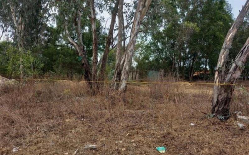 Bà Rịa - Vũng Tàu: Bé gái 5 tuổi tử vong ở bãi đất trống, nghi bị xâm hại tình dục