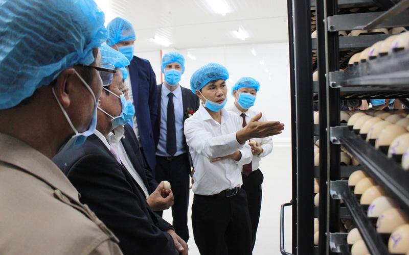 """Khánh thành nhà máy ấp trứng gia cầm 200 tỷ đồng: """"Bước đệm"""" đưa thịt gà Việt sang châu Âu"""