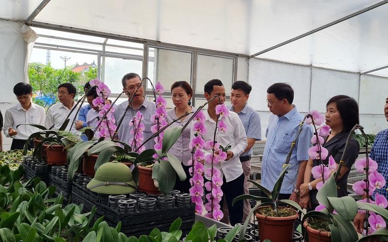 Hải Phòng: Nông dân tích cực làm nông nghiệp công nghệ cao, đếm sơ đã có hơn 53.000 hộ sản xuất giỏi