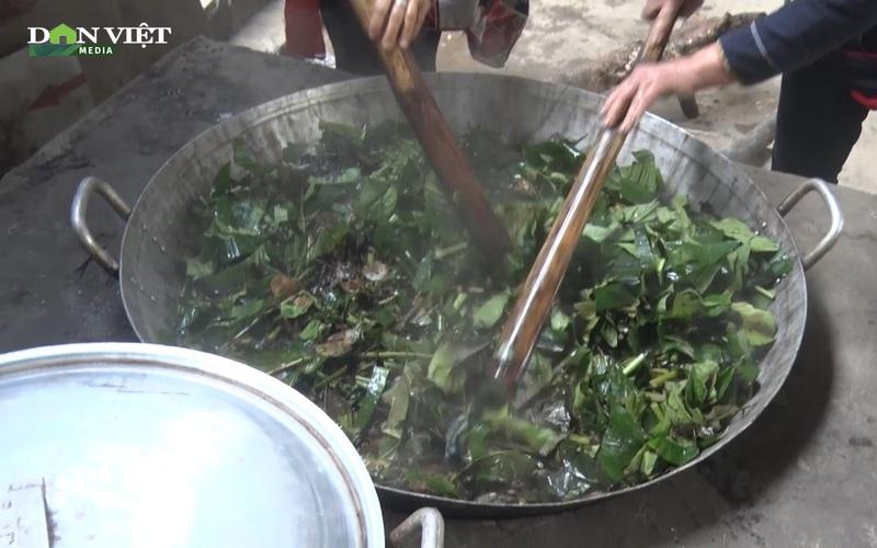 Hòa Bình: Trồng cây thuốc nam, đồng bào Dao đỏ vừa phát triển kinh tế vừa lưu giữ nghề truyền thống