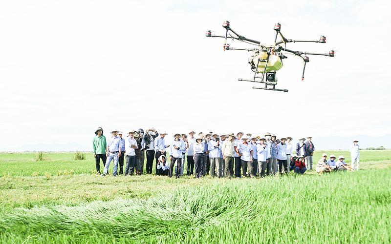 """Quảng Trị: Chuyển đổi số """"đòn bẩy"""" thúc đẩy nông nghiệp phát triển"""
