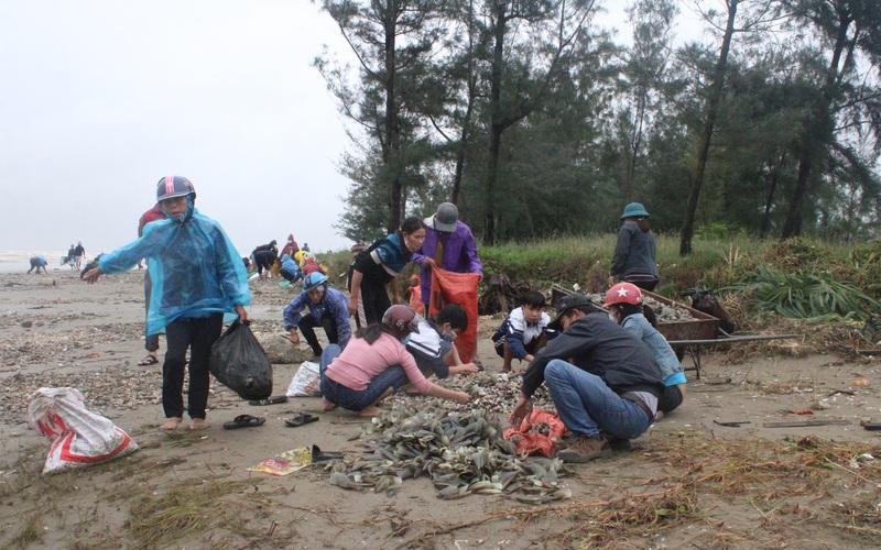 """Hà Tĩnh: Hàng trăm người dân kéo nhau ra biển vớt """"lộc trời"""" sau mưa bão"""