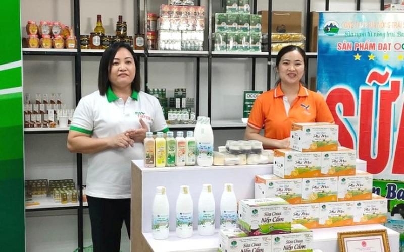 """""""Chợ đêm trên mây"""" - giải pháp tiêu thụ nông sản độc đáo của Hà Nội"""