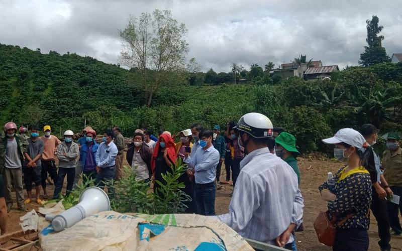 Lâm Đồng: Trồng mắc ca theo hướng an toàn sinh học, nông dân nâng cao chất lượng nông sản