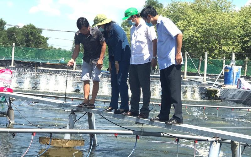 """""""Liều"""" nuôi tôm công nghệ cao, anh nông dân TP Hồ Chí Minh thành tỷ phú nơi cửa sông Nhà Bè"""