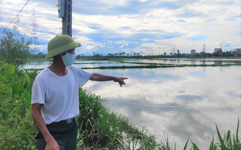 Hà Tĩnh: Ruộng biến thành sông, hàng nghìn ha lúa chìm trong biển nước