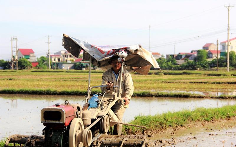 """Nắng """"như thiêu như đốt"""", nông dân Hà Tĩnh vẫn buộc phải ra đồng làm việc cho kịp mùa vụ"""
