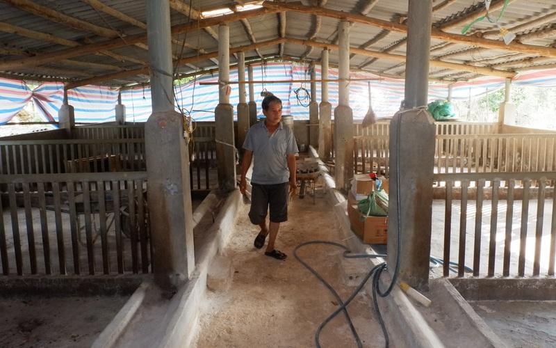 """Gặp khó tái đàn lợn: Dịch bệnh, giá thức ăn tăng cao, người chăn nuôi như """"một cổ hai tròng"""""""