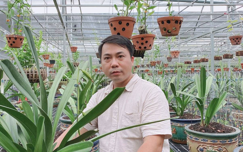 Nghệ nhân lan Quản Mạnh Dũng và giấc mơ nâng tầm lan Việt