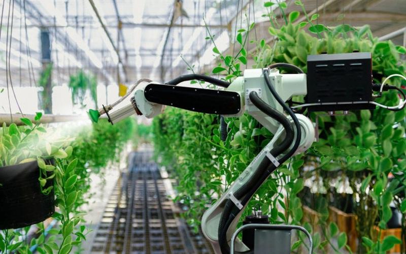 """""""Trang trại rảnh tay"""": Người nông dân và công nghệ đỉnh cao"""