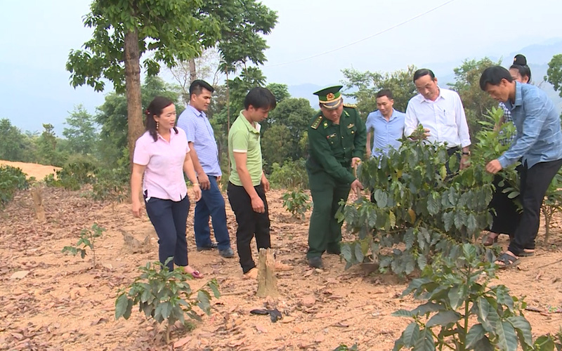 Giúp dân thoát nghèo ở vùng biên giới Sơn La (Kỳ 2): Đảng soi đường, đời sống nhân dân được ấm no