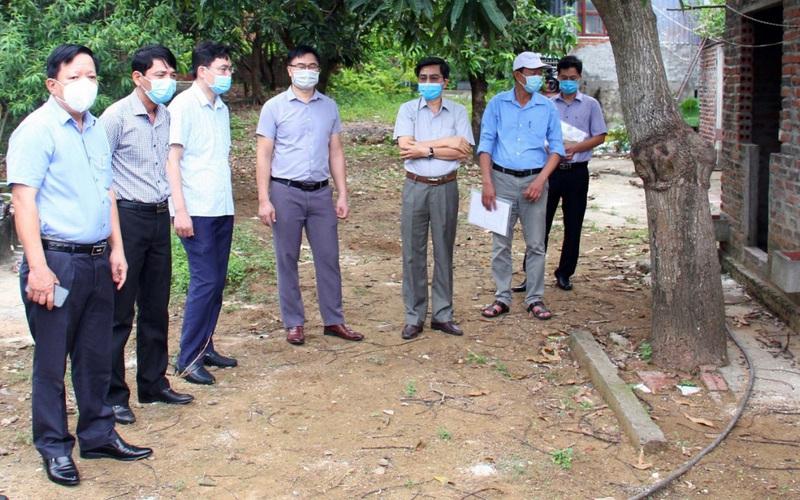 Hải Phòng: Huyện đảo Cát Hải vào cuộc ngăn chặn dịch tả lợn châu Phi