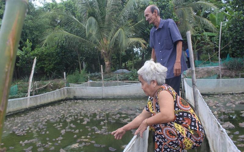 Long An: Mít Thái chung vườn với khóm, ếch chung ao với cá, nhà nông không chỉ khá mà còn đổi đời luôn