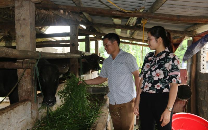 Hội Nông dân tỉnh Hòa Bình: Giúp nông dân sản xuất an toàn để phát triển bền vững