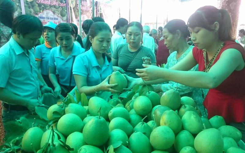 TT-Huế: Hỗ trợ đưa hộ sản xuất nông nghiệp lên sàn thương mại điện tử để tránh bị ép giá