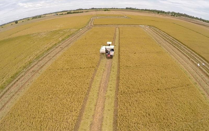 Điều kiện sang tên đất nông nghiệp mới nhất