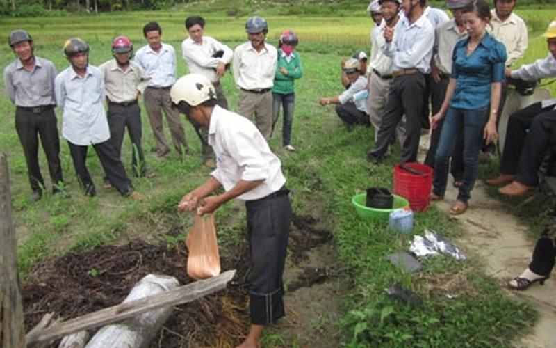 Quảng Nam: Hỗ trợ nông dân sản xuất phân hữu cơ vi sinh