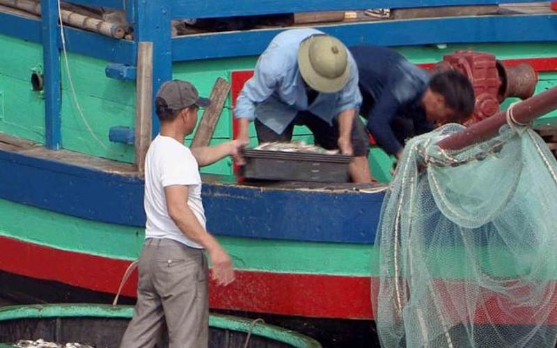 """Đầu năm, ngư dân Nghệ An trúng đậm """"lộc biển"""""""