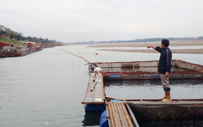 Nước sông Đà cạn kiệt bất thường, dân cuống cuồng bắt cá lồng