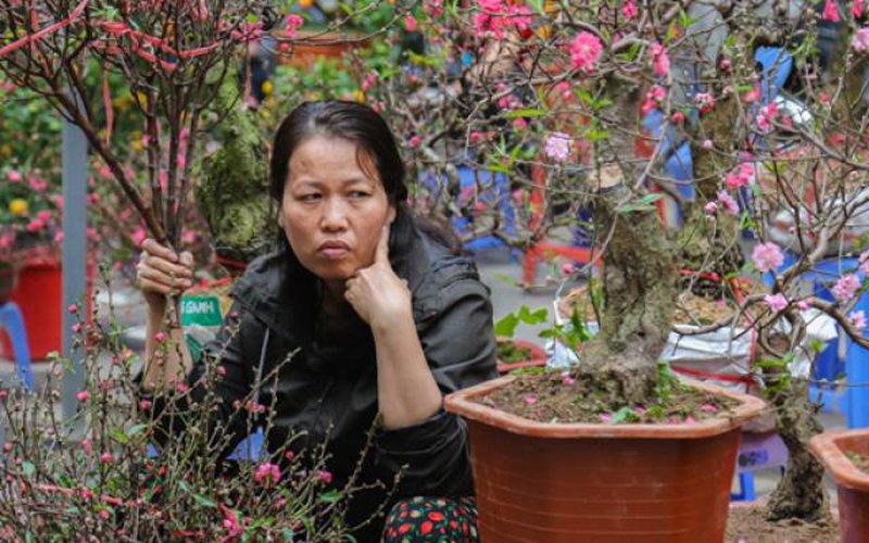 Ảnh: Chợ hoa truyền thống lâu đời nhất Hà Nội ế ẩm những ngày cận Tết