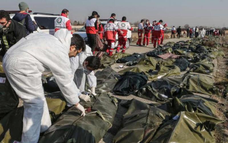 Máy bay chở 176 người rơi: Iran bất ngờ mời Mỹ tham gia điều tra