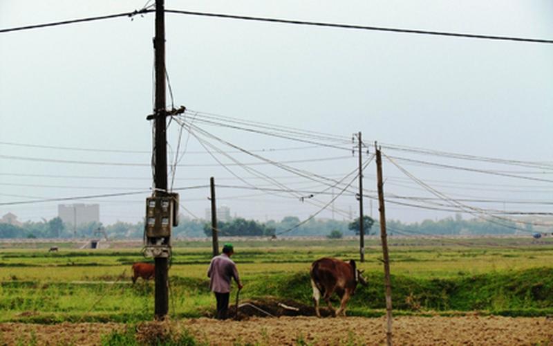 Lưới điện nông thôn: Chỉ lo bỗng dưng... rơi vào người