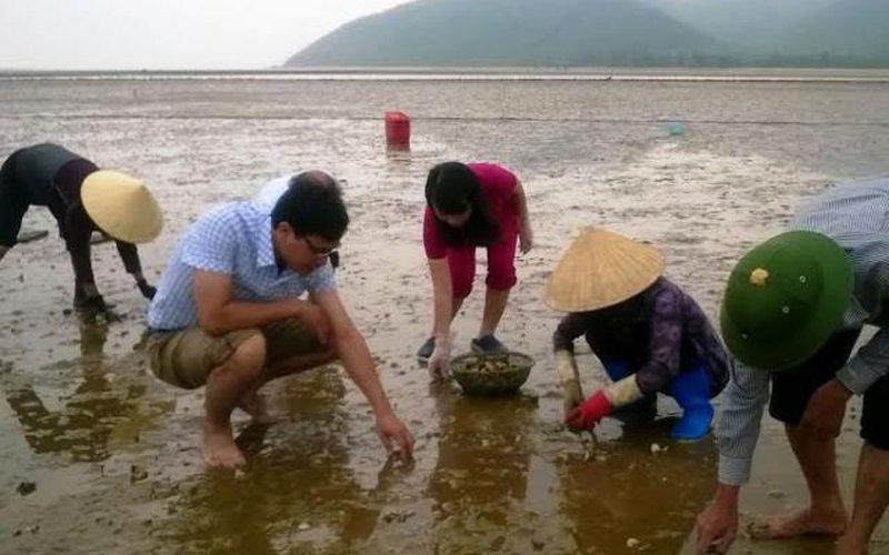 Hội Nông dân Hà Tĩnh giúp người dân thu gom ngao chết