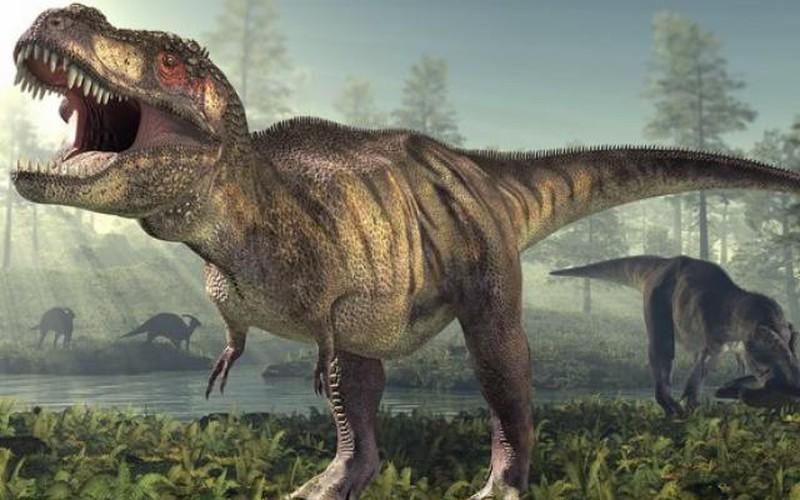 Đây mới là nguyên nhân khiến loài khủng long tuyệt chủng?
