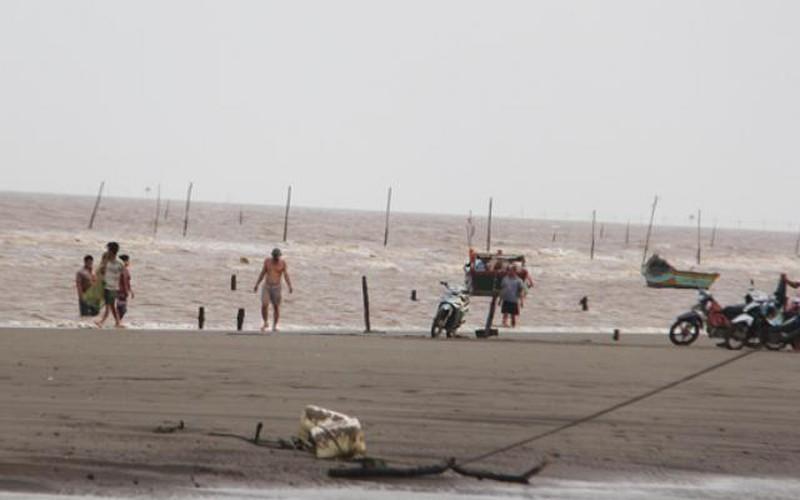 Điều tra nguyên nhân cá biển chết bất thường ở Duyên Hải, Trà Vinh