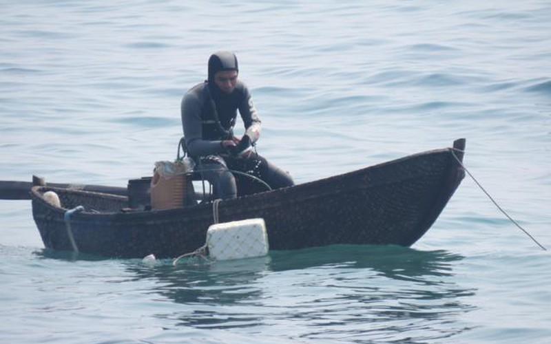 """Nghề lặn tìm nhím biển """"tiến vua"""""""