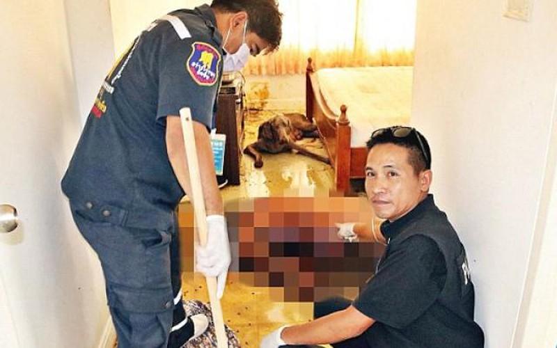Thi thể chủ nhân bị chó cưng ăn thịt trong căn hộ ở Thái Lan