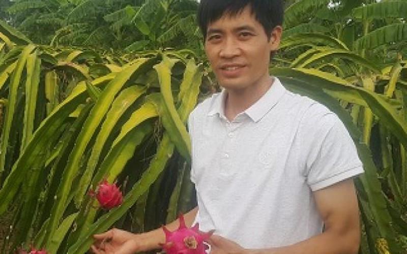 """Ninh Bình: Thầy giáo bỏ nghề về quê """"nghịch đất"""" trồng thanh long"""