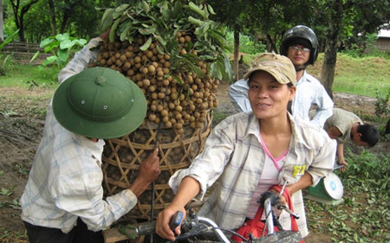 Huyện Sông Mã (Sơn La): Còn 10 tiêu chí  chưa xã nào đạt