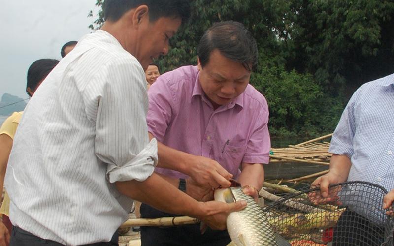 Chạm tay vào niềm vui người nuôi cá