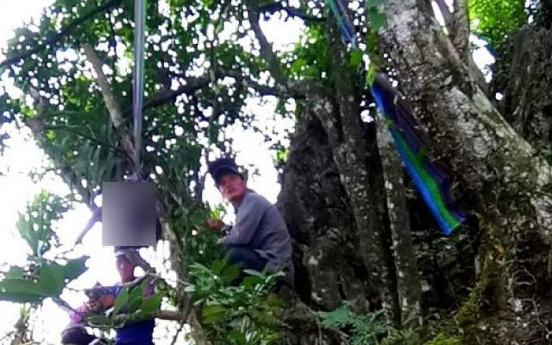 Đôi nam nữ 16 tuổi người Mông treo cổ chết chung trên cây
