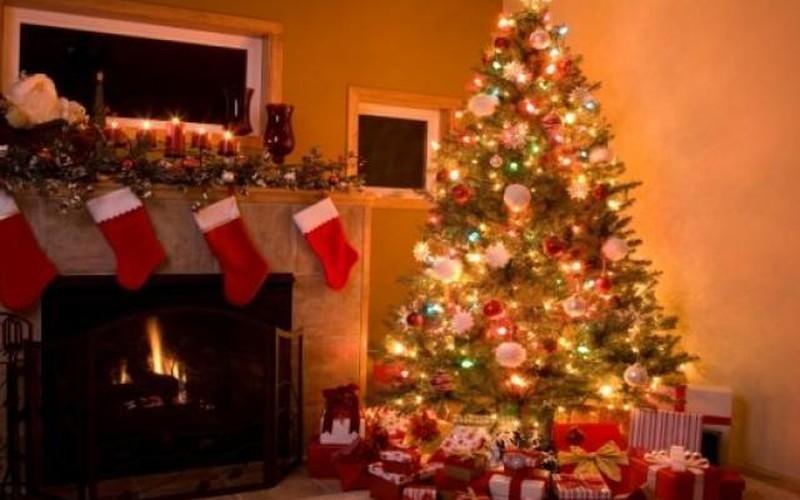 Cây thông Noel xuất hiện như thế nào?