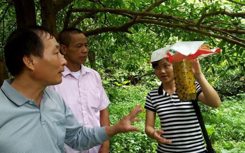 Vốn ưu đãi biến hàng ngàn hộ nghèo xứ Lạng thành triệu phú, tỉ phú